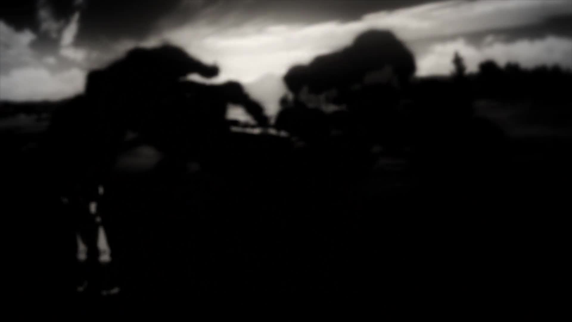 Black Clover (TV) (Dub)